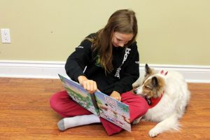 learn to read with a french bulldog